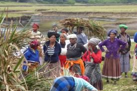 Suedafrika-Bulungula-Huettenbau-Frauen