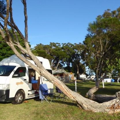 Australien-Camper-Melbourne-Sydney-Van-Baum