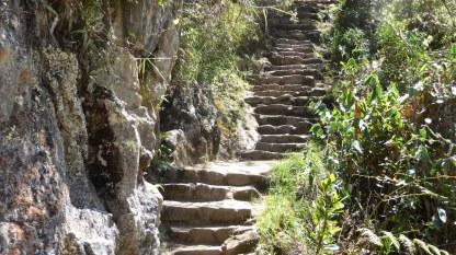 Peru-MachuPicchu-WaynaPicchu-Treppen