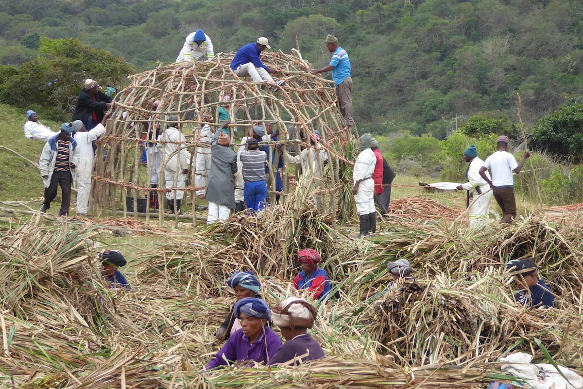 19 Monate auf Weltreise: Männer und Frauen bauen eine Hütte in Bulungula