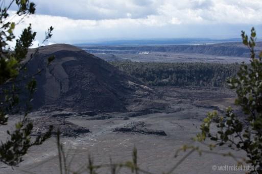 Big Island - Volcano - Iki Trail (1)