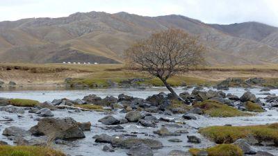 weltreise-zentral-mongolei-0442