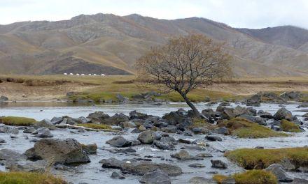 Zentrale Mongolei – Weltreise Reisebericht – Tour 2