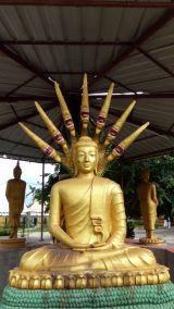 weltreise-laos-pakse-0049