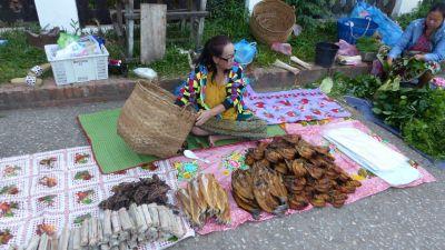 weltreise-laos-luang-prabang-0206