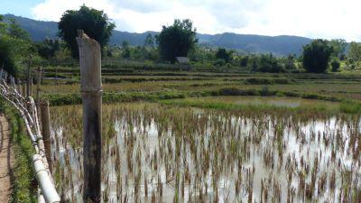 weltreise-laos-phonsavan-0190