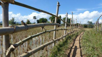 weltreise-laos-phonsavan-0205