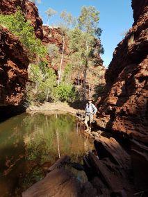 weltreise nocker australien - Karrijini National Park_555