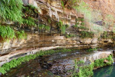 weltreise nocker australien - Karrijini National Park_809