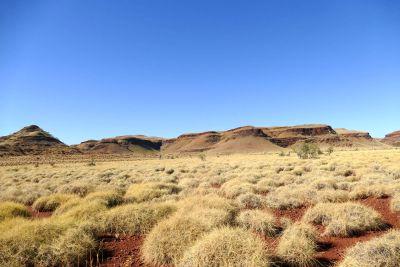 weltreise nocker australien - Millstream National Park_308