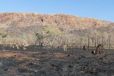 weltreise nocker australien - purnululu national park_513