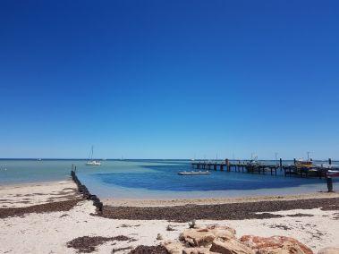weltreise nocker australien - shark bay_68