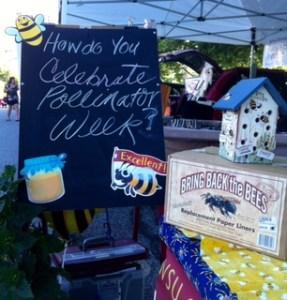 National Pollinator Week Display