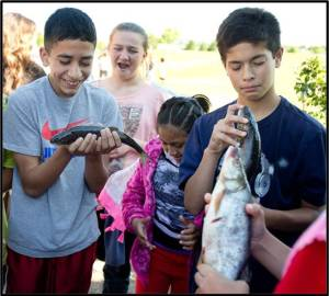 sixth-graders Wednesday at Clovis Intermediate School