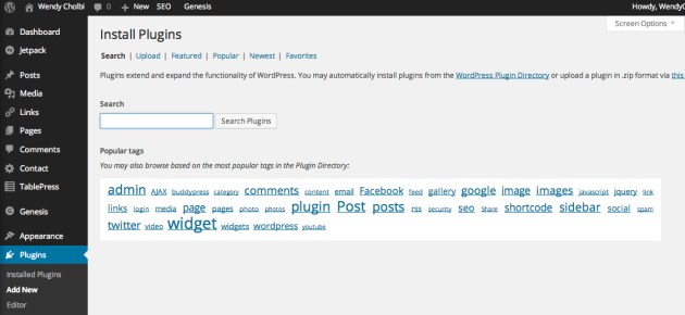Figure 2: How to search for a WordPress plugin