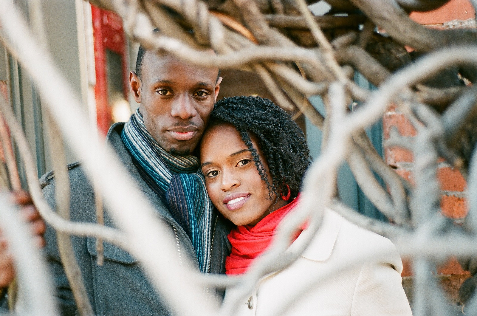 bride and groom portrait surrounded by tree branches