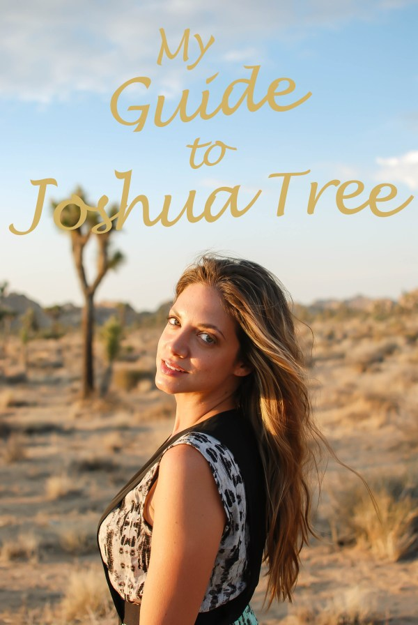 My Guide to Joshua Tree