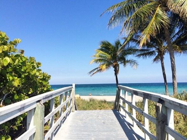 Hollywood Beach, Florida, Hollywood, ocean, palm trees