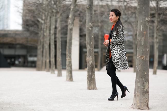 Snow Leopard-9
