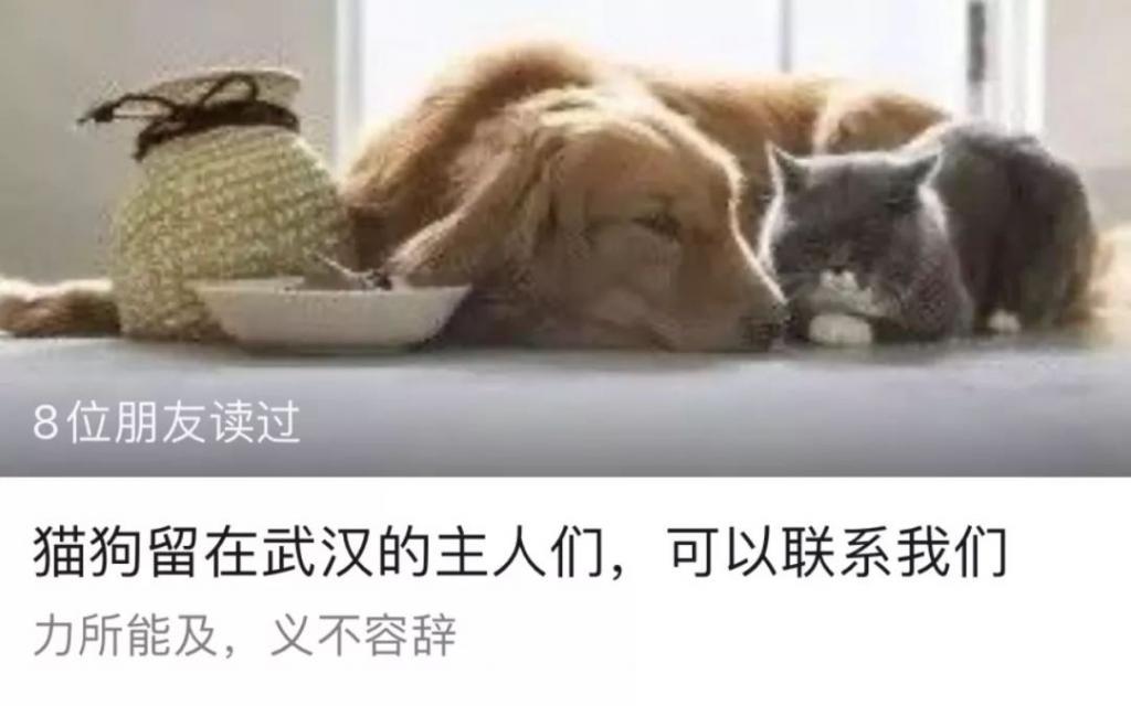 武汉家中的某些成员 成了另一群等待救援的生命