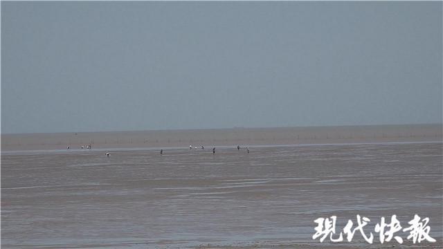 祖孙海滩捡贝壳走失,还有 20 分钟涨潮……