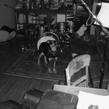 The house dog - Recording 'Call Me When You're Single' - January 6-13, 2011
