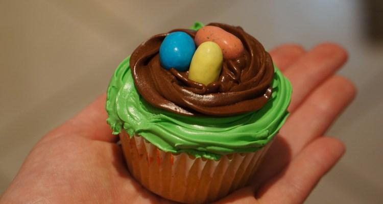 Robbin Egg Cupcake