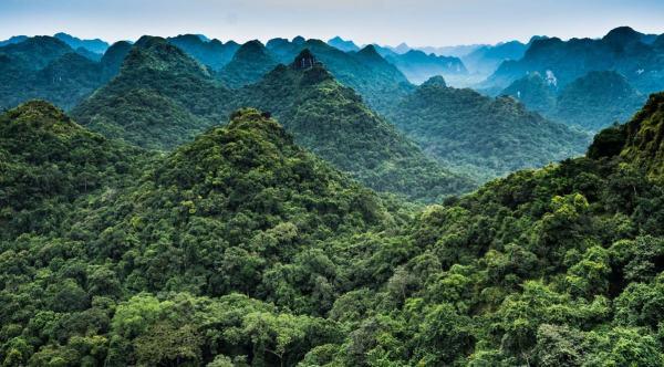 Cat Ba National Park, Vietnam