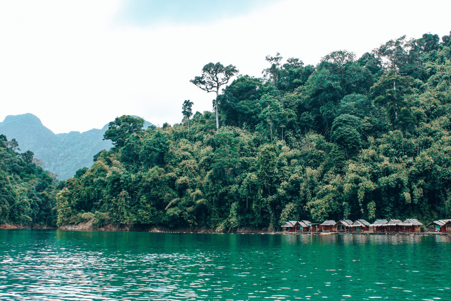 De mooiste bestemming in Thailand: Khao Sok National Park via @wereldreizigersnl