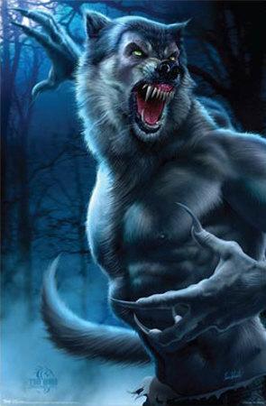 tom-wood-wolfman