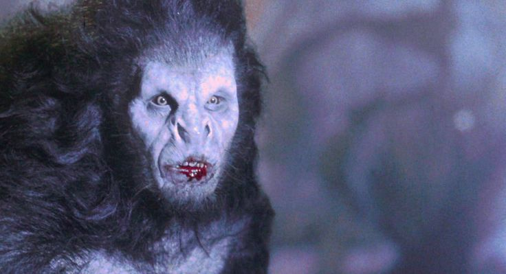 The Werewolf-ish Links to DRACULA   Werewolves