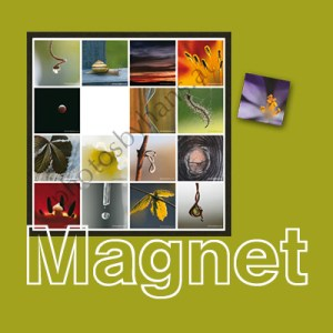 magnetART