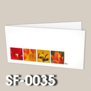 SF-0035