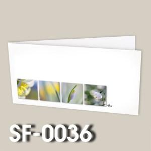 SF-0036