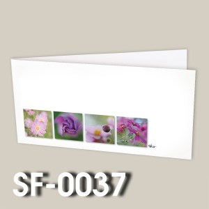 SF-0037