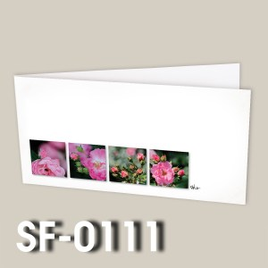 SF-0111