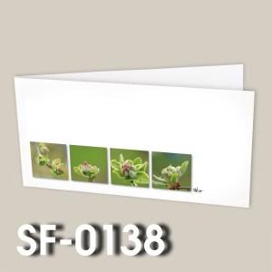 SF-0138