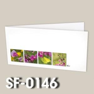 SF-0146