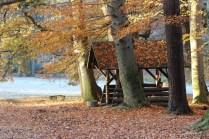 Spätherbst im Park