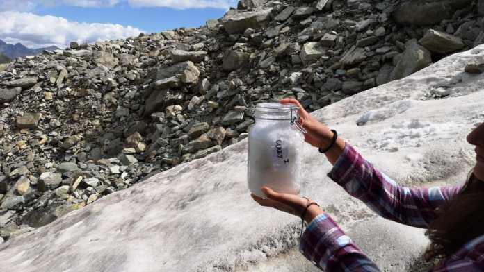 TORX: in vendita i pettorali solidali e ambientali
