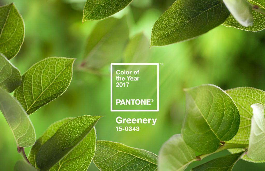 Pantone - Greenery el nuevo color del año 2017