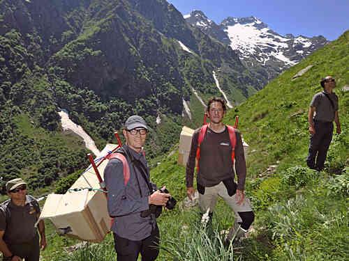 Bartgeier, getragen von Wolfram und Francesco Tomasinelli