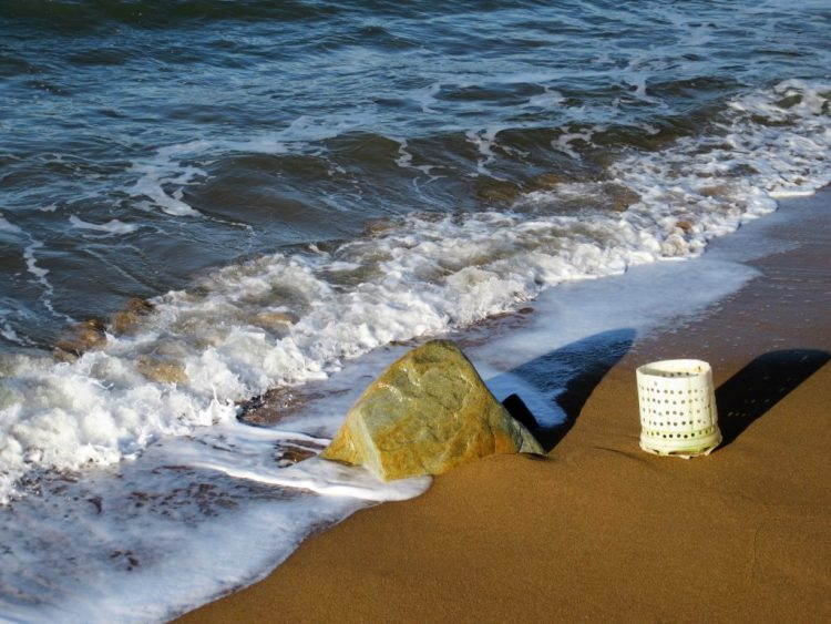 Plastic washed ashore at West Bay