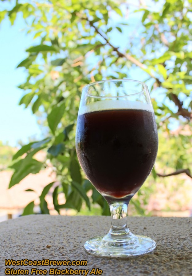 Gluten Free Home Brewed Beer