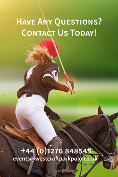 Polo woman player is riding on a horse, close-up.