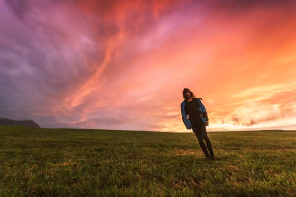 Austria, Upper Austria, young man standing on meadow at sunset