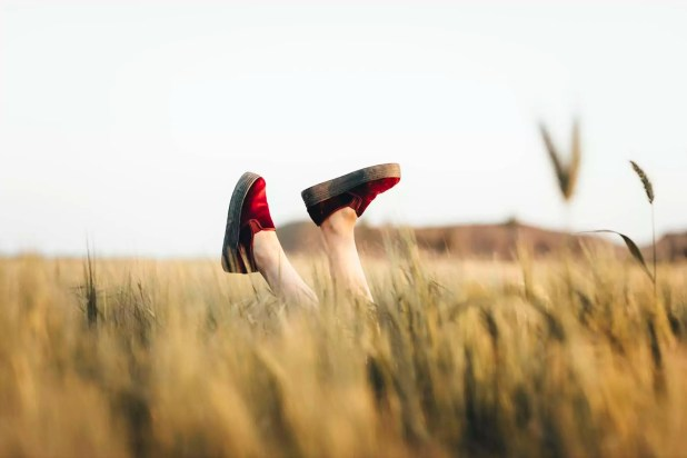 Woman lying in cornfield, kicking legs with red shoes