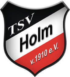 User Dachverein – TSV Holm