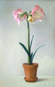 "Thomas S. Buechner ""Amaryllis"" 36x24 oil framed $7,500."