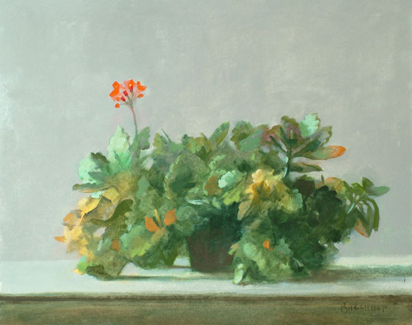 "Thomas S. Buechner ""Succulents"" 11x14 $2,570. framed"